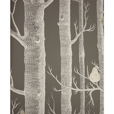 Cole & Son Wallpaper Woods & Pears Wallpaper ($100) ❤ liked on Polyvore featuring home, home decor, wallpaper, backgrounds, backing, cream wallpaper, beige wallpaper, contemporary wallpaper, gray wallpaper and contemporary home decor
