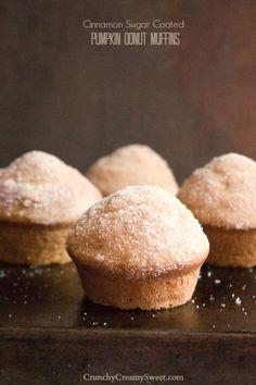 Cinnamon Sugar Coated Pumpki Donut Muffins by CrunchyCreamySweet.com