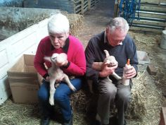 My dad got more on his trousers than in the lamb!