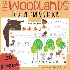 Free Woodlands Preschool Printable Pack!
