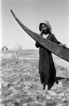 """Suaid boy with a tarada."""" Eastern marshes, 1956, by WIlfred Thesiger. The seasonal Eastern Marshes - that is, those east of the Shatt Al-Arab within Basra Governorate - no longer exist. They were among the first drained by a kilometer-wide canal dug to divert Tigris overflows directly to the Shatt Al-Arab. Return water from the southern Majnoon oil fields located in that former marsh zone is one candidate for salt marsh construction. #cmarsh"""
