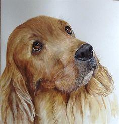 Thomas by Glennis Weston Watercolor Animals, Watercolor Paintings, Watercolours, Animal Paintings, Animal Drawings, Wildlife Art, Dog Portraits, Whimsical Art, Dog Art