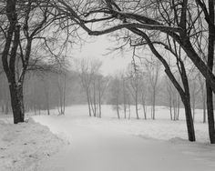 Winter Road, Snow, Landscape, Nature, Outdoor, Outdoors, Scenery, Naturaleza, Outdoor Games