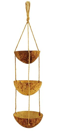 DIY coconut planter Garden Trees, Balcony Garden, Lawn And Garden, Hanging Planters, Planter Pots, Flower Vases, Flower Pots, Recycling, Coconut Shell Crafts