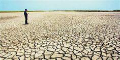 Estragos de la sequía en la Isla Parque Salamanca, en el primer semestre del 2014. La imagen fue premiada por la Universidad Sergio Arboleda de Santa Marta. Sidewalk, Santa Marta, Beach, Water, Outdoor, Electric Power, Natural Resources, Islands, Parks