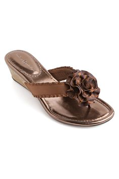 7011087c797 Lindsay Phillips - Missy Shoes in Bronze Bronze Shoes