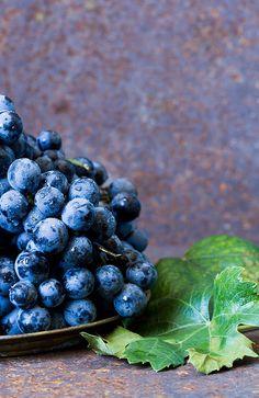 "asiwaswalkingallalone: ""blue grape by Mezeselet on Flickr. """