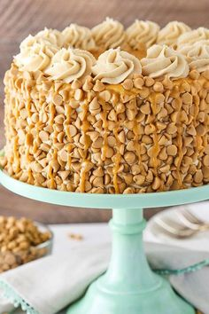 This Peanut Butter Layer Cake is loaded with peanut butter in the cake, frosting and decorations. It's a dream cake for any peanut butter lover! I think the biggest peanut butter lover in our house is probably Jessie, our black lab. There are few things that get her attention quite like the smell of peanut …