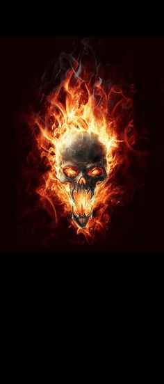 Skull Flames door wrap Flaming Skull with black background Contact Rm wraps Have…