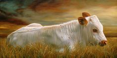 Longhorn Bull Calf,   by Teresa Elliott