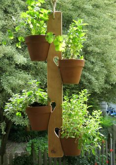 Wooden Fence Or Wall Mount Clay Pot Plant Hanger