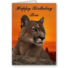 Shop Mountain lion at sunset award created by laureenr. Personalize it with photos & text or purchase as is! Acrylic Awards, Mountain Lion, Animal Kingdom, Hand Towels, Lions, Panther, Sunset, Artwork, Prints