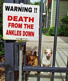 Uwaga!! Śmierć od kostek w dół