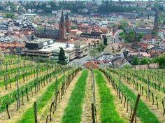 5-Tage-Reise in die Pfalz