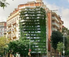 green walls urban farming vertical garden