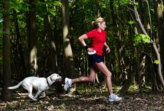 Safe Exercise With Your Dog: Walks, Games, Dog Parks, and Paw Care Girls Lifting, Boxing Girl, Dog Runs, Dog Care Tips, Leather Dog Collars, Dog Walking, Dog Friends, Dog Owners, Fun Workouts