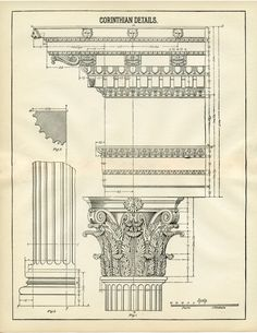 Architecture Printable Corinthian Columns - Diagram! - The Graphics Fairy