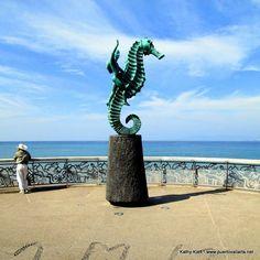 Caballito de Mar en el Malecon / Seahorse statue on the Malecon http://www.puertovallarta.net/what_to_do/sculptures-00-1-seahorse-zamarripa-malecon.php #puertovallarta #vallarta #jalisco #mexico
