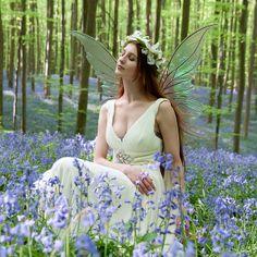 blue_bell_faerie-34cropped by Violaine Villota, via Flickr