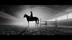 Massimo Dutti: The Equestrian Film