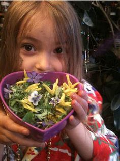 Personal Mentorship with Susun Weed - Week of May 2, 2013 - fairy salad recipe