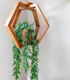 Hanging Wall Planters, Hanging Plants, Indoor Plants, Hang Plants From Ceiling, Ceiling Hanging, Patio Plants, Indoor Gardening, House Plants Decor, Plant Decor