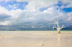 Ocean in Bahama