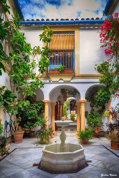 Courtyard in Cordoba, Spain                                                                                                                                                                                 Más