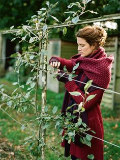 valsfashion: elorablue: Shades Of Autumn: ©Sarah Kaye-Emma Freemantle Styles Espalier Fruit Trees, Vie Simple, Estilo Hippy, Photo Portrait, Farm Gardens, Country Life, Country Living, Country Wear, Country Houses