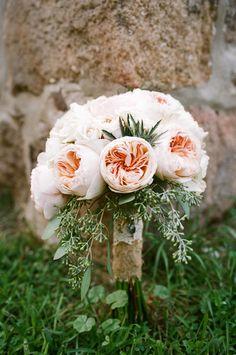 Garden roses #peach