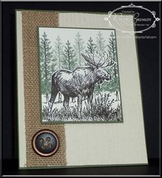 Walk on the Wild Side! | Rachel Stamps  Stamps:  Walk in the Wild and Lovely as a Tree stamp brush set