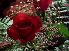 Valentines Day Quotes Happy Valentine's Day Valentines Day Valentine's Day Vday Quotes .