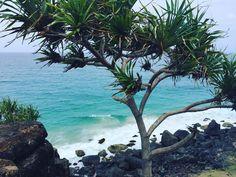 Point Danger  . #pointdanger #snapperrocks #rainbowbay #goldcoast #queensland #australia  #beach #ocean by mel_reardon