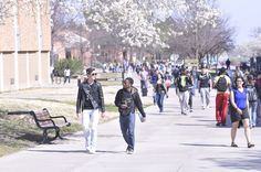 """Rain or shine, the """"pedestrian mall"""" is always full of smiling hornets!"""