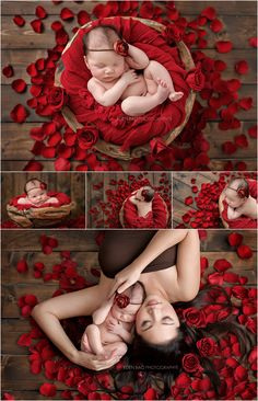 Newborn Photographer Northwest Seattle red rose petals