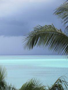 Jungle Cove, Bahamas - love a tropical rain storm!