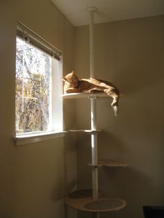 Cat condo using IKEA Stolmen pole and ledges from Contempocat
