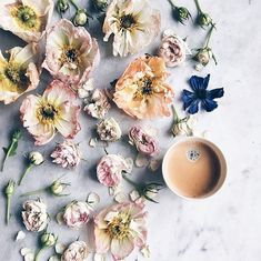 floral instagrams to follow and my blogging birthday - MY FRENCH COUNTRY HOME