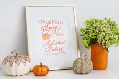Pumpkin Spice Baby Shower Free Printable  -Baby Shower Decor - meadoria