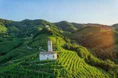 Discovering Conegliano Valdobbiadene, Home to Prosecco's Most Celebrated Vineyards.