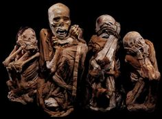 "CHACHAPOYA CULTURE.  ""Screaming"" mummies of the Chachapoya people, c.1400 CE.  //  They're not really frozen in horror, of course, but the image is still striking!"