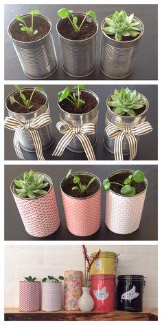 Genbrug tomme konservesdåser som planteskjulere. Se hvordan på bloggen: