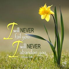 HEBREWS 13 :5