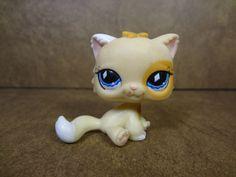 #521 Persian Cat 2006
