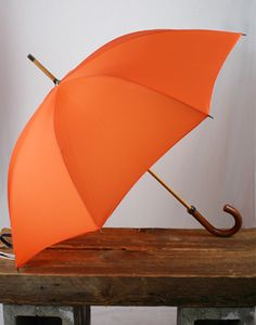 who wouldn't want an orance umbrella!