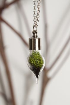 Teardrop Necklace Silver Plated by With Roots; living garden necklace Imagine keeping your personal stash in there? Jewelry Box, Jewelery, Jewelry Accessories, Weird Jewelry, Trendy Jewelry, Silver Necklaces, Jewelry Necklaces, Terrarium Necklace, Teardrop Necklace