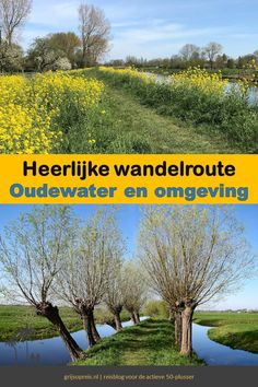 Maybe Someday, Utrecht, Holland, The Outsiders, Things To Do, Places To Visit, Hiking, Country Roads, World