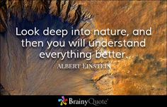 Look deep into nature, and then you will understand everything better. - Albert Einstein