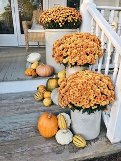 Looking for an effortless look to your fall porch decor. This post by Liz Marie, shares all you need to get jaw dropping eclectic fall porch. Pumpkin Planter, Fall Mums, Fall Containers, Succulent Containers, Container Flowers, Container Plants, Halloween, Fall Planters, Mums In Planters