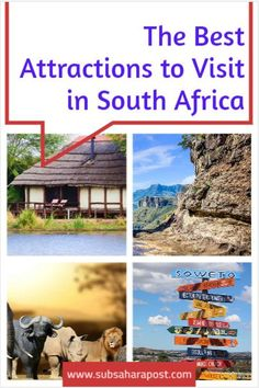 South Africa is a haven for travelers who prefer an 'all in one' destination. Whether you want to go on an African safari, exploring cultural-rich cosmopolitans or you're yearning for a desert retreat, you'll be spoilt for choice. Here is a simple travel guide to help plan your next trip in this part of the southern hemisphere.Here you'll learn about Africa travel,Africa travel destinations, Africa travel guide, & Africa travel photography. #travelafrica #africatravel South Africa Facts, North Africa, Best Holiday Destinations, Top Travel Destinations, Travel Hacks, Travel Guide, Languages Of South Africa, African Safari, Yearning